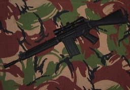 Classic Army FN FAL (SA58) s pu<!--[if gte mso 9]><xml>